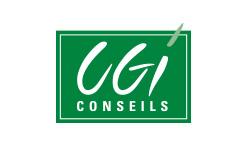 CGI Conseils